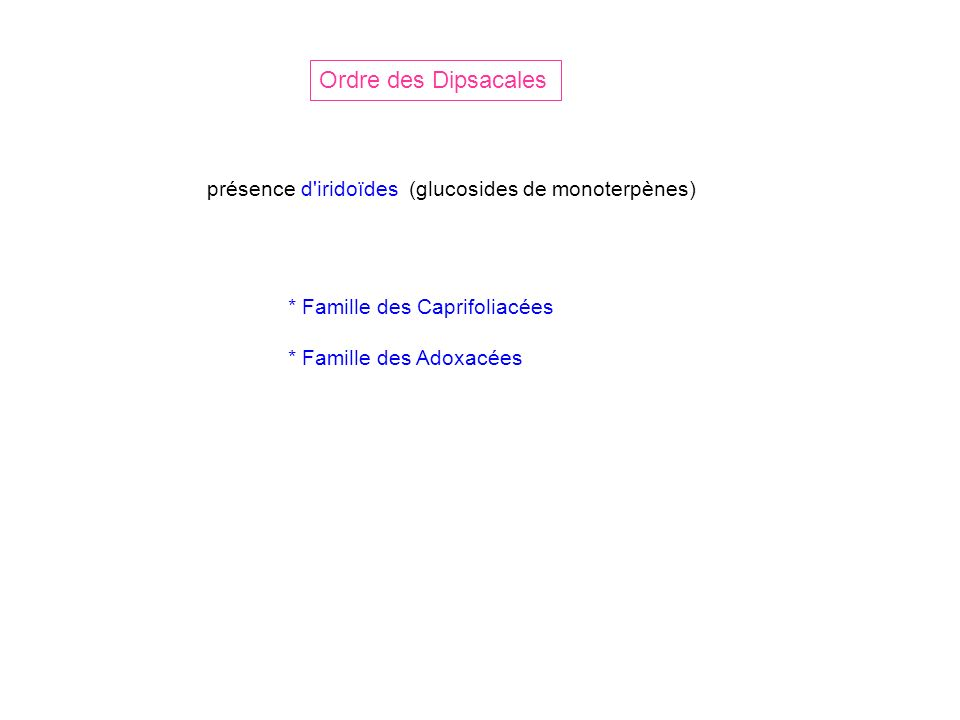 Ordre des Dipsacales * Famille des Caprifoliacées * Famille des Adoxacées présence d'iridoïdes (glucosides de monoterpènes)
