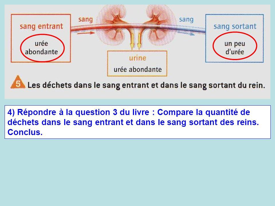 4) Répondre à la question 3 du livre : Compare la quantité de déchets dans le sang entrant et dans le sang sortant des reins. Conclus.