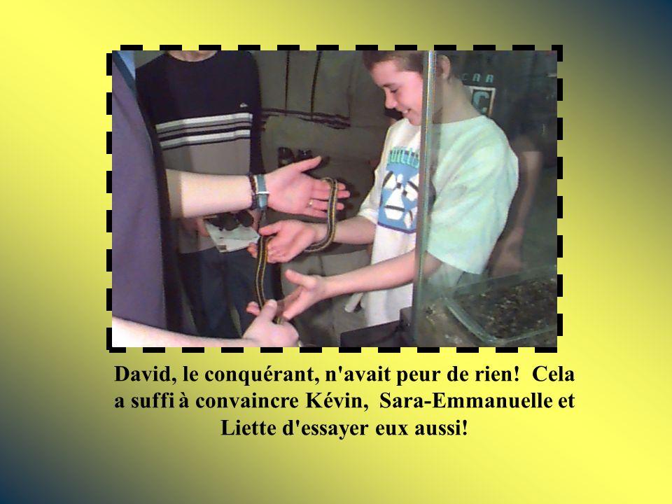 David, le conquérant, n avait peur de rien.