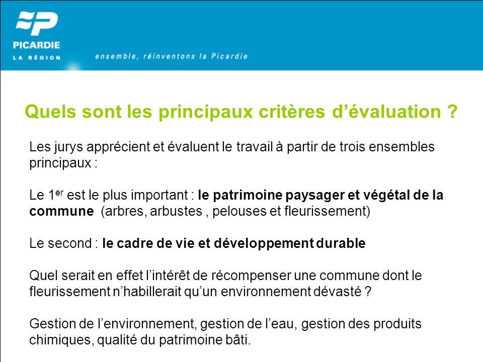 Quels sont les principaux critères dévaluation ? Les jurys apprécient et évaluent le travail à partir de trois ensembles principaux : Le 1 er est le p