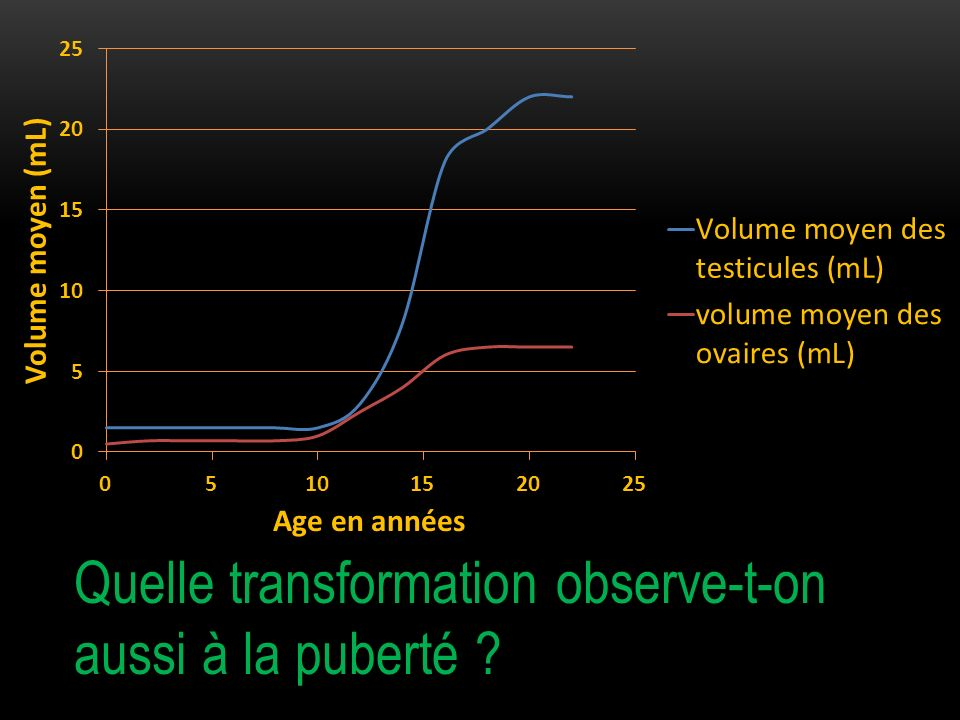 Quelle transformation observe-t-on aussi à la puberté ?
