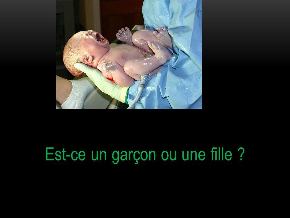 A la naissance ce sont les organes reproducteurs externes (testicules et pénis pour le garçon, et vulve chez la fille) qui permettent de distinguer un garçon dune fille.