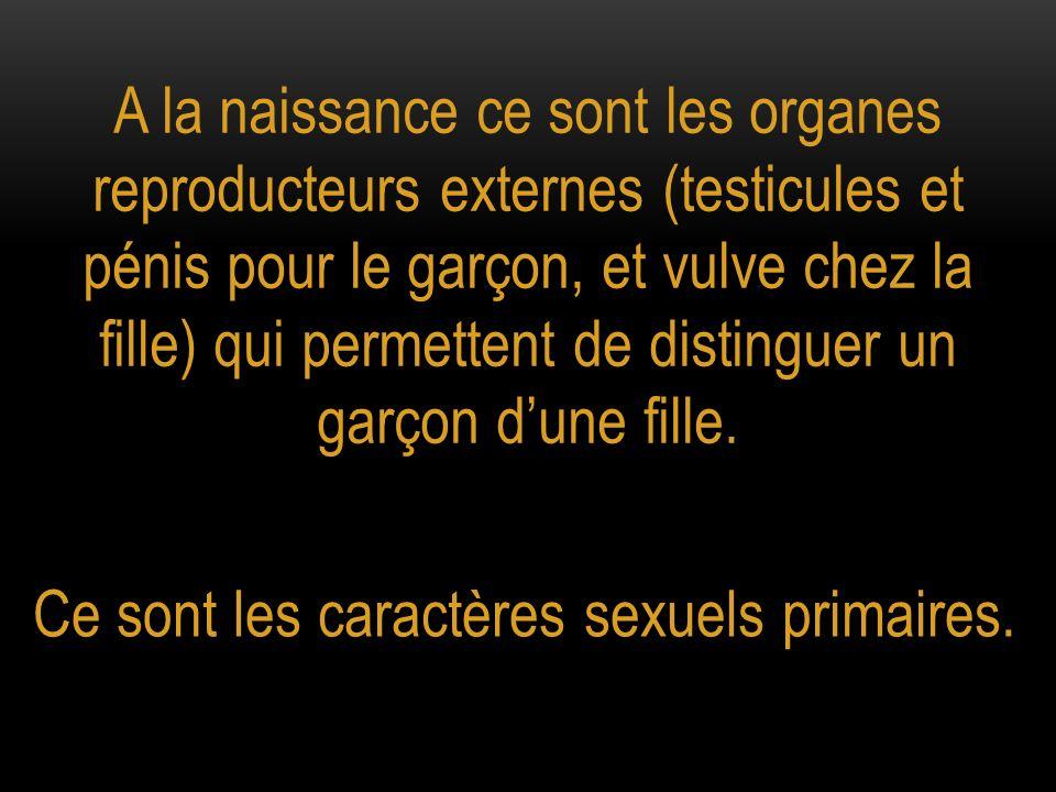 A la naissance ce sont les organes reproducteurs externes (testicules et pénis pour le garçon, et vulve chez la fille) qui permettent de distinguer un