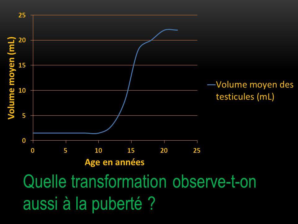 Compléter le graphique distribué.
