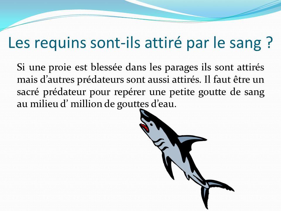 Les requins sont-ils attiré par le sang ? Si une proie est blessée dans les parages ils sont attirés mais dautres prédateurs sont aussi attirés. Il fa