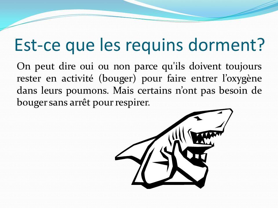 Est-ce que les requins dorment? On peut dire oui ou non parce qu'ils doivent toujours rester en activité (bouger) pour faire entrer loxygène dans leur