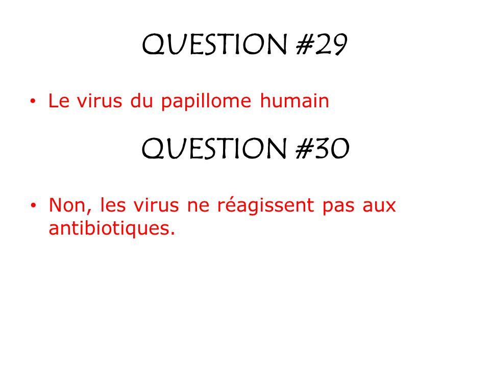 Le virus du papillome humain QUESTION #29 Non, les virus ne réagissent pas aux antibiotiques. QUESTION #30