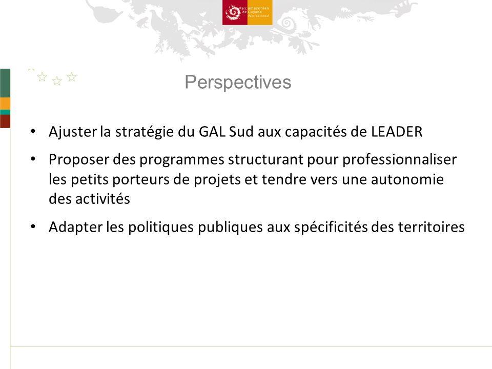 Perspectives Ajuster la stratégie du GAL Sud aux capacités de LEADER Proposer des programmes structurant pour professionnaliser les petits porteurs de projets et tendre vers une autonomie des activités Adapter les politiques publiques aux spécificités des territoires