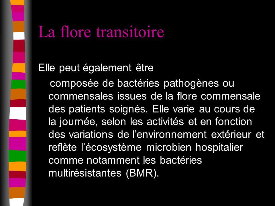 La flore transitoire Elle peut également être composée de bactéries pathogènes ou commensales issues de la flore commensale des patients soignés.
