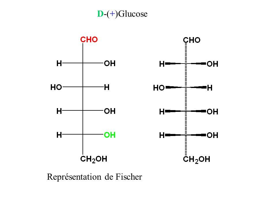 D-(+)Glucose Représentation de Fischer