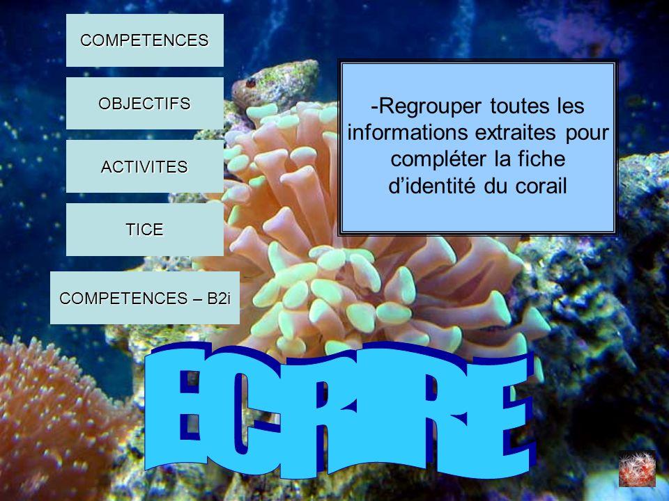 -Regrouper toutes les informations extraites pour compléter la fiche didentité du corail COMPETENCES OBJECTIFS ACTIVITES COMPETENCES – B2i COMPETENCES