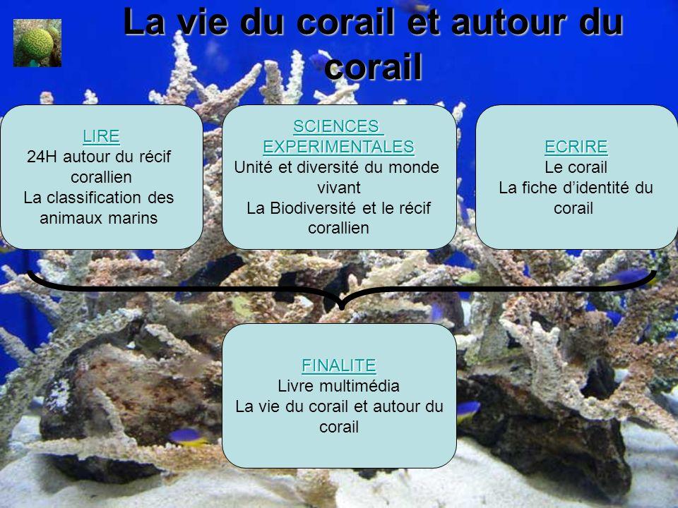 La vie du corail et autour du corail SCIENCES EXPERIMENTALES Unité et diversité du monde vivant La Biodiversité et le récif corallien LLLL IIII RRRR E