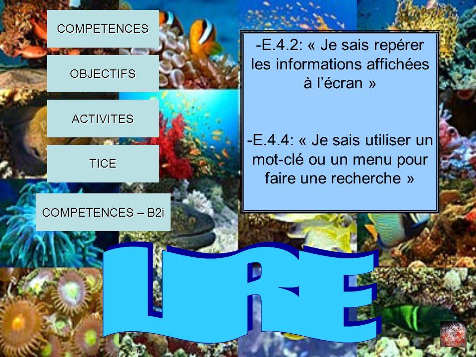 -Regarder un extrait de la vidéo « Récif corallien » et lister les animaux marins présents -Rechercher des images, danimaux marins autour du récif corallien, sur internet COMPETENCES OBJECTIFS ACTIVITES COMPETENCES – B2i COMPETENCES – B2i TICE
