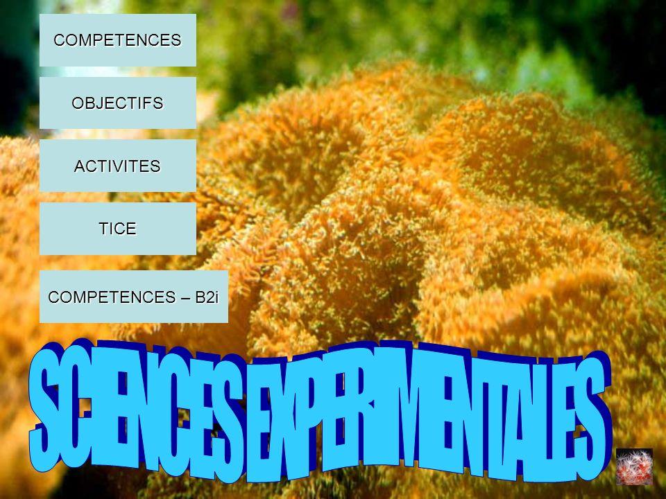 COMPETENCES OBJECTIFS ACTIVITES COMPETENCES – B2i COMPETENCES – B2i TICE