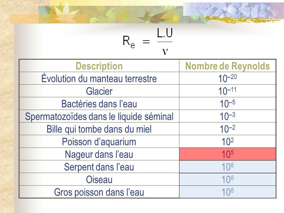 DescriptionNombre de Reynolds Évolution du manteau terrestre10 –20 Glacier10 –11 Bactéries dans leau10 –5 Spermatozoïdes dans le liquide séminal10 –3