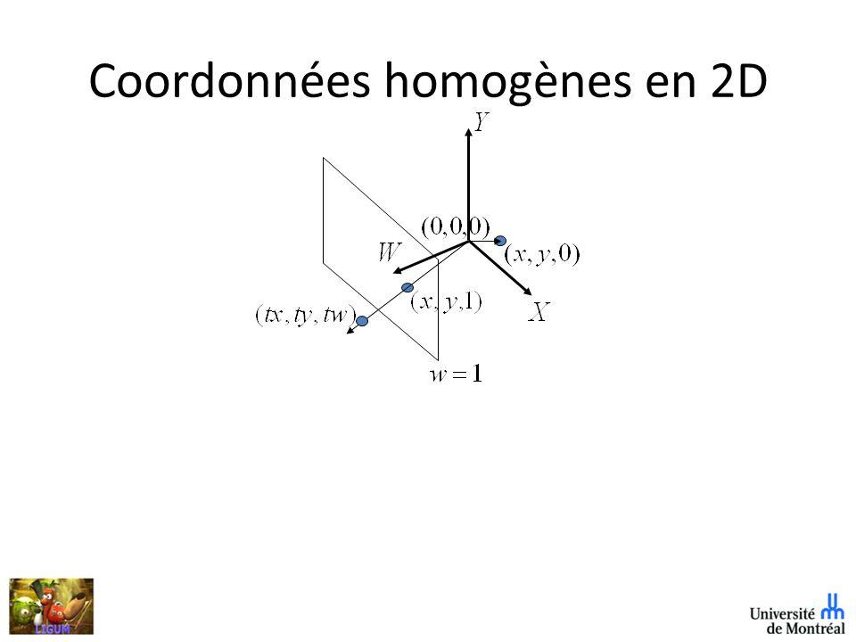 Coordonnées homogènes en 2D
