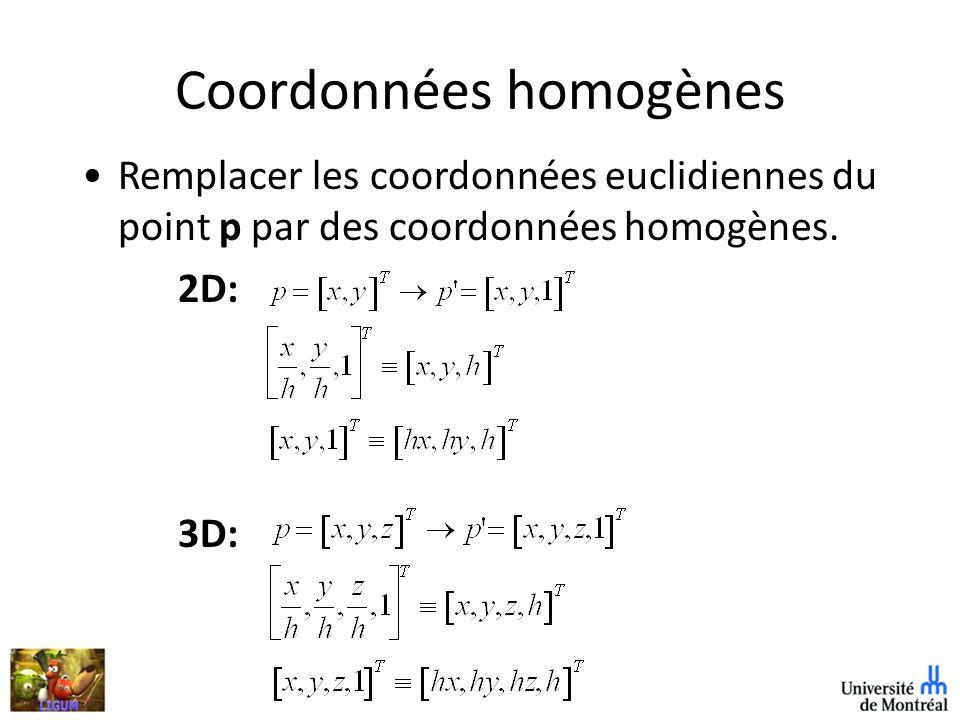 Coordonnées homogènes Remplacer les coordonnées euclidiennes du point p par des coordonnées homogènes.