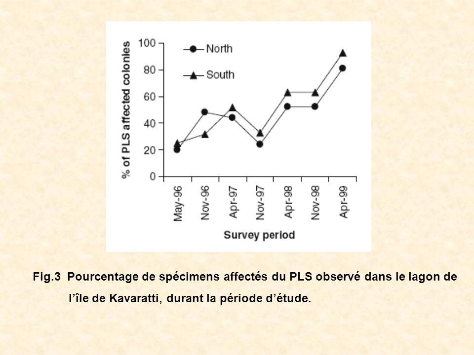 Fig.3 Pourcentage de spécimens affectés du PLS observé dans le lagon de lîle de Kavaratti, durant la période détude.