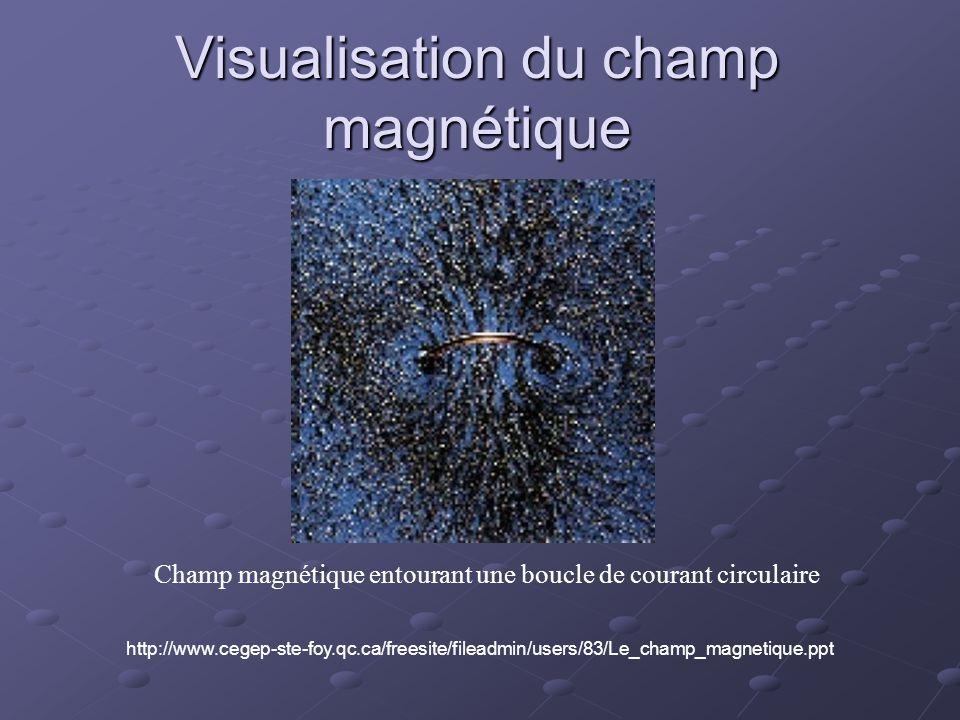 Visualisation du champ magnétique Champ magnétique entourant une boucle de courant circulaire http://www.cegep-ste-foy.qc.ca/freesite/fileadmin/users/83/Le_champ_magnetique.ppt