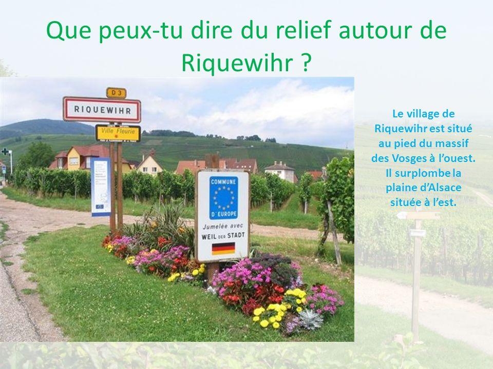 Que peux-tu dire du relief autour de Riquewihr ? Le village de Riquewihr est situé au pied du massif des Vosges à louest. Il surplombe la plaine dAlsa