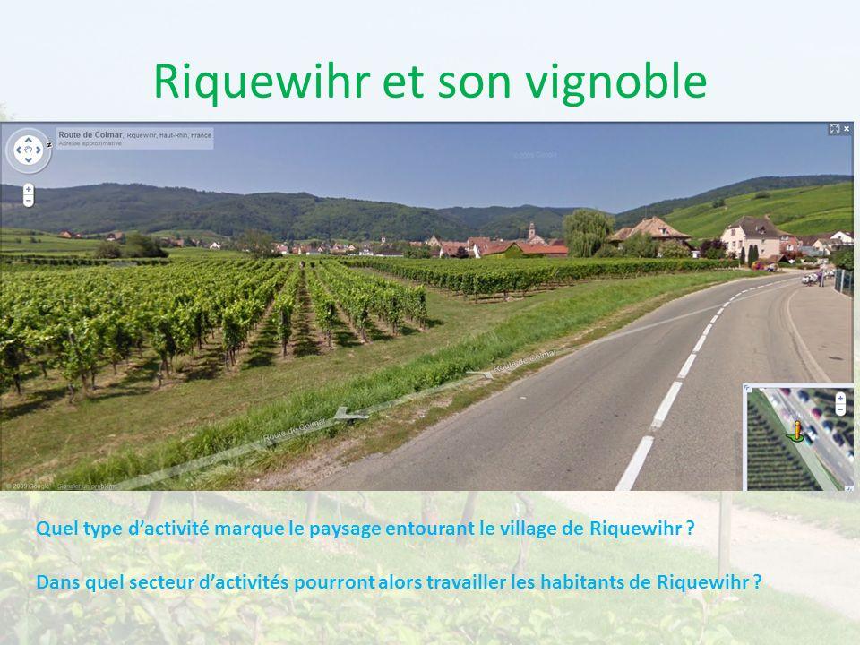 Riquewihr et son vignoble Quel type dactivité marque le paysage entourant le village de Riquewihr ? Dans quel secteur dactivités pourront alors travai