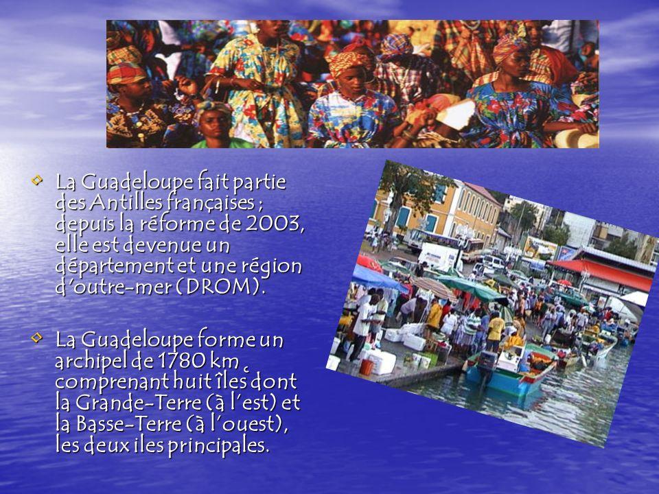 La Grande-Terre et la Basse-Terre forment La Grande-Terre et la Basse-Terre forment la Guadeloupe continentale (en forme de papillon).