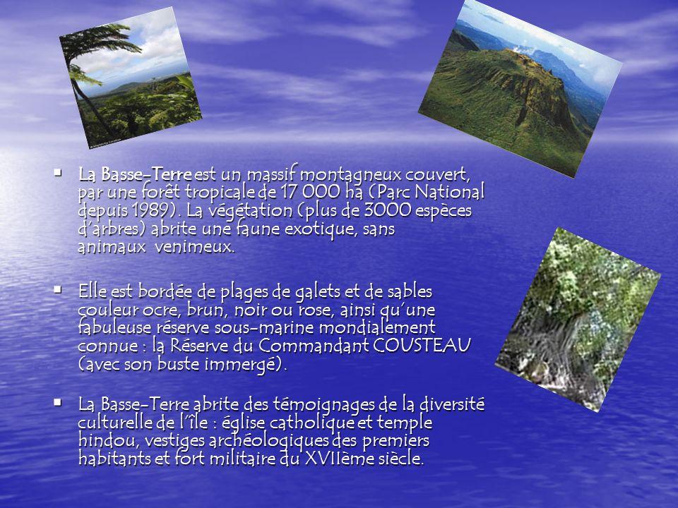 La Basse-Terre est un massif montagneux couvert, par une forêt tropicale de 17 000 ha (Parc National depuis 1989).