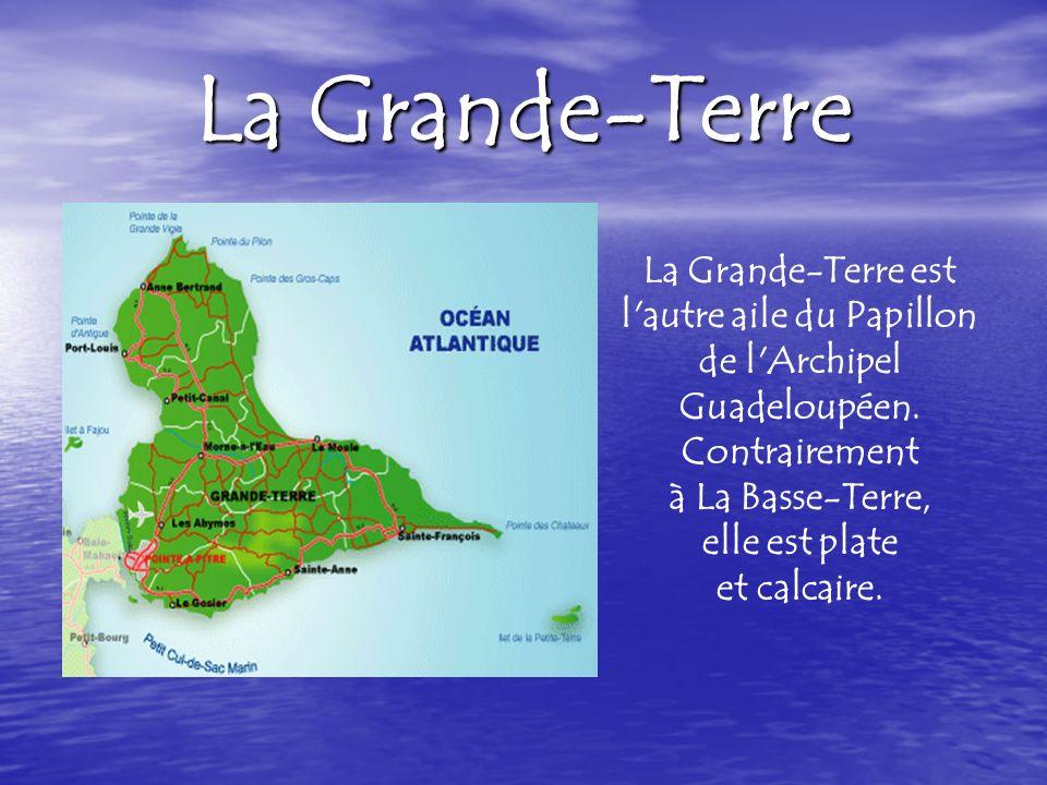 La Grande-Terre est un plateau calcaire bien adapté à la culture de la canne à sucre, qui couvre la majeure partie de lîle.
