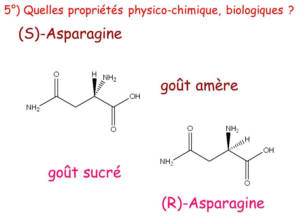 (S)-Asparagine (R)-Asparagine goût amère goût sucré 5°) Quelles propriétés physico-chimique, biologiques ?