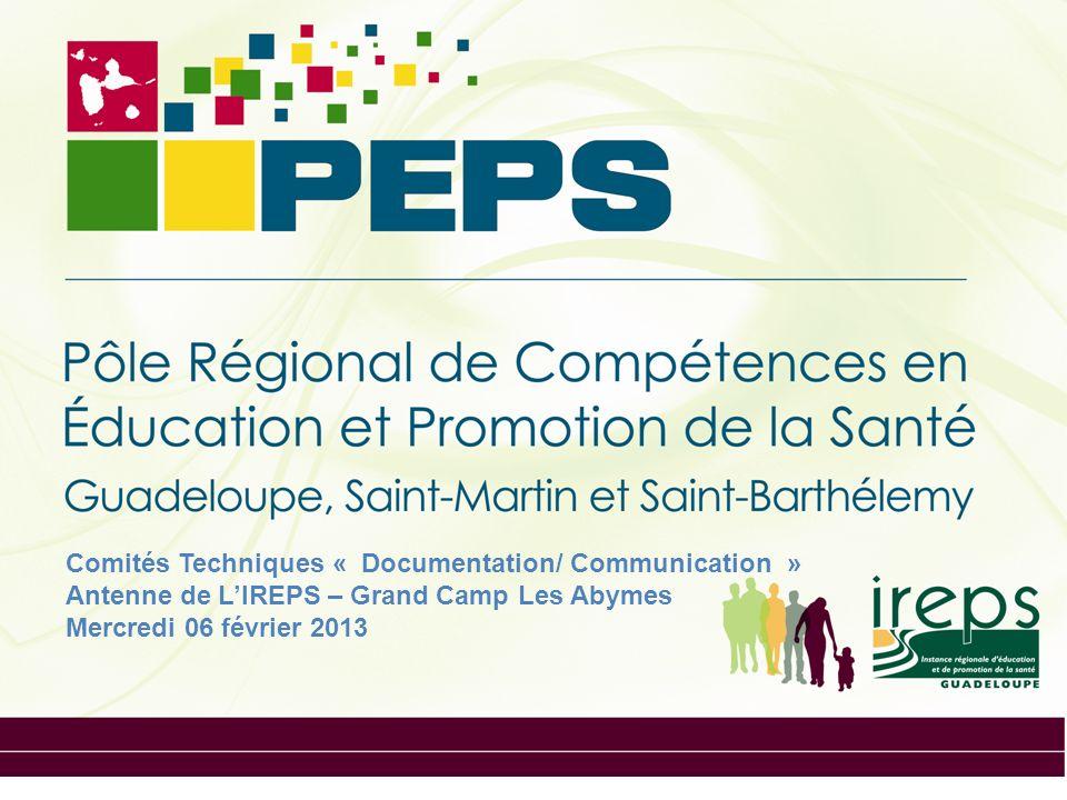 Comités Techniques « Documentation/ Communication » Antenne de LIREPS – Grand Camp Les Abymes Mercredi 06 février 2013