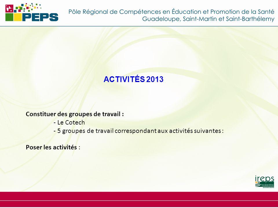 ACTIVITÉS 2013 Constituer des groupes de travail : - Le Cotech - 5 groupes de travail correspondant aux activités suivantes : Poser les activités :