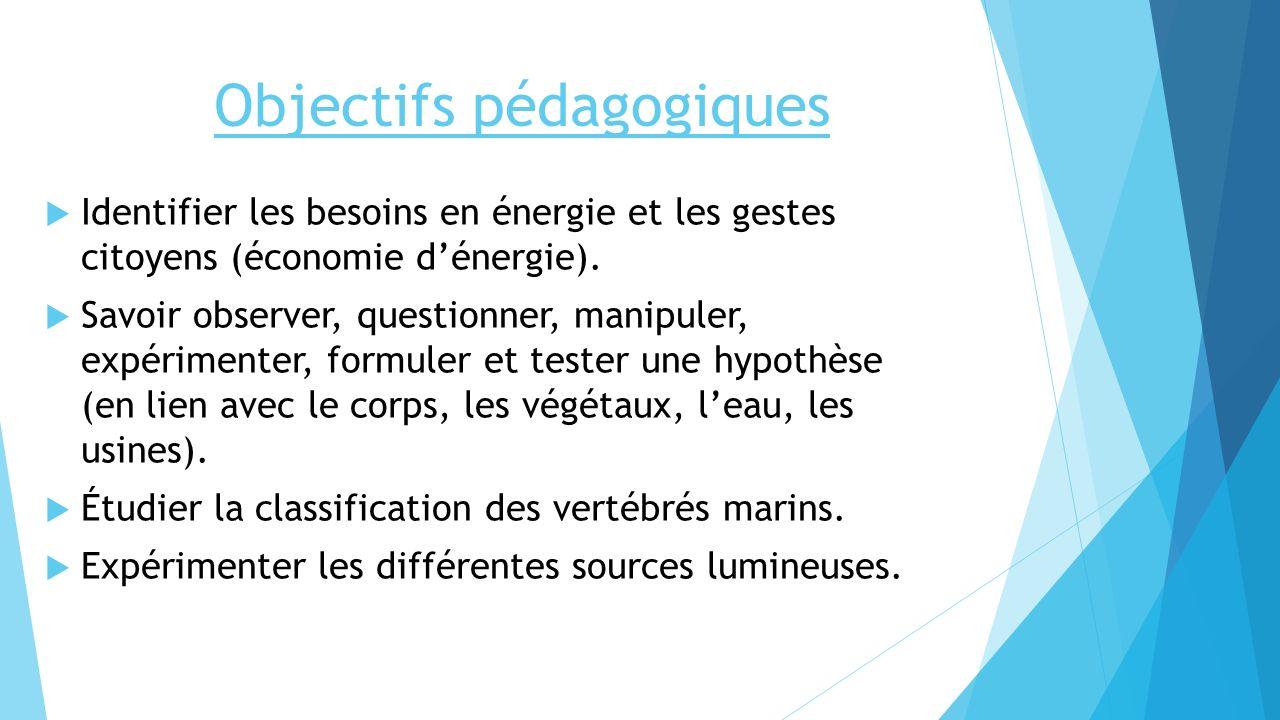 Objectifs pédagogiques Identifier les besoins en énergie et les gestes citoyens (économie dénergie). Savoir observer, questionner, manipuler, expérime