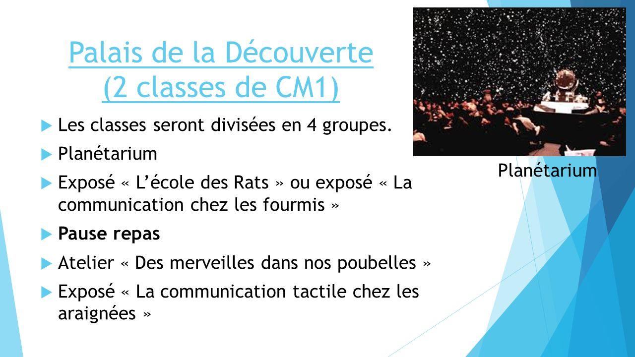 Palais de la Découverte (2 classes de CM1) Les classes seront divisées en 4 groupes. Planétarium Exposé « Lécole des Rats » ou exposé « La communicati