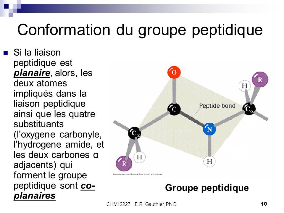 CHMI 2227 - E.R. Gauthier, Ph.D.10 Conformation du groupe peptidique Si la liaison peptidique est planaire, alors, les deux atomes impliqués dans la l