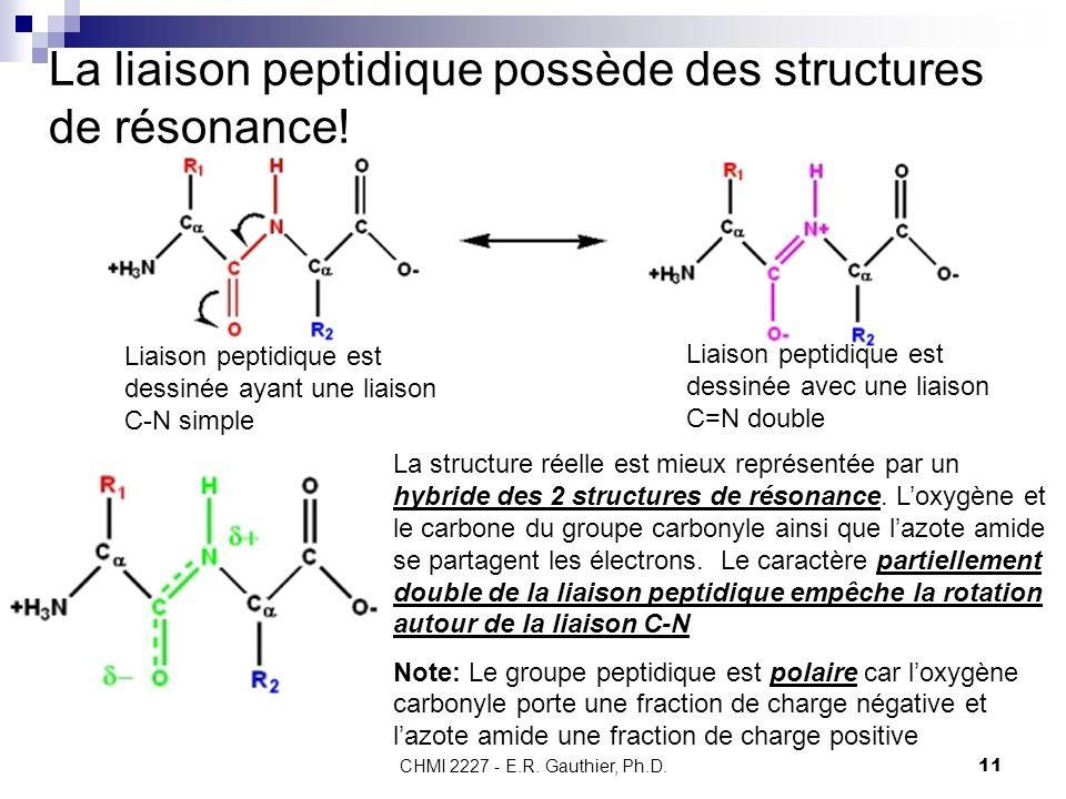 CHMI 2227 - E.R. Gauthier, Ph.D.11 La liaison peptidique possède des structures de résonance! Liaison peptidique est dessinée ayant une liaison C-N si