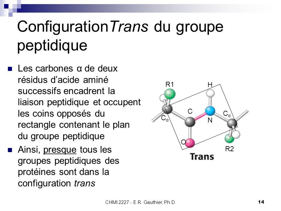CHMI 2227 - E.R. Gauthier, Ph.D.14 ConfigurationTrans du groupe peptidique Les carbones α de deux résidus dacide aminé successifs encadrent la liaison