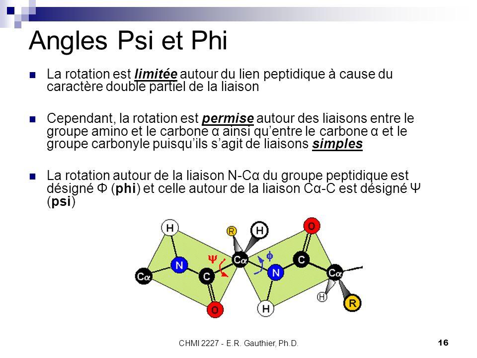 CHMI 2227 - E.R. Gauthier, Ph.D.16 Angles Psi et Phi La rotation est limitée autour du lien peptidique à cause du caractère double partiel de la liais