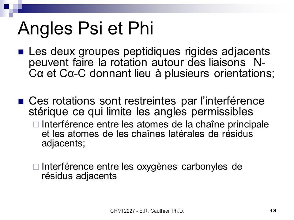 CHMI 2227 - E.R. Gauthier, Ph.D.18 Angles Psi et Phi Les deux groupes peptidiques rigides adjacents peuvent faire la rotation autour des liaisons N- C
