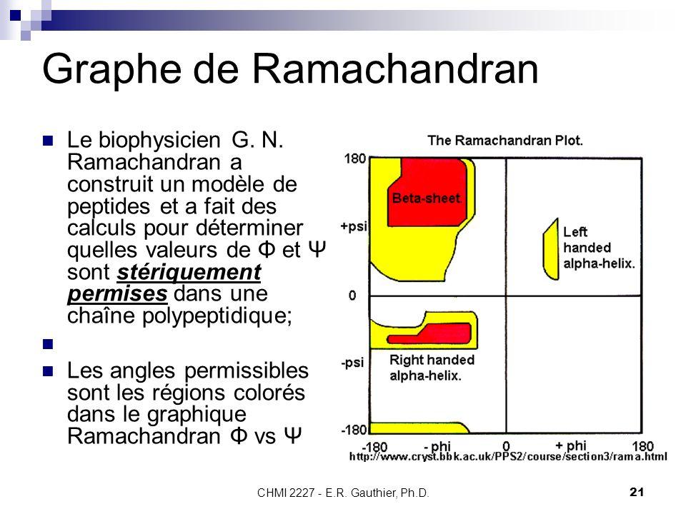 CHMI 2227 - E.R. Gauthier, Ph.D.21 Graphe de Ramachandran Le biophysicien G. N. Ramachandran a construit un modèle de peptides et a fait des calculs p