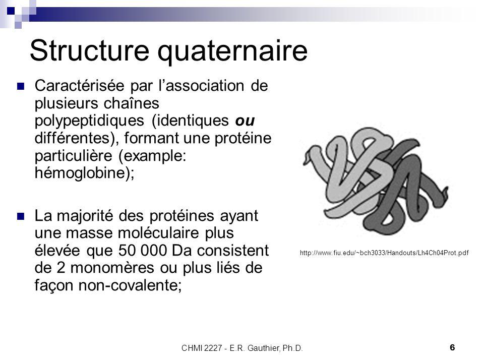 CHMI 2227 - E.R. Gauthier, Ph.D.6 Structure quaternaire Caractérisée par lassociation de plusieurs chaînes polypeptidiques (identiques ou différentes)