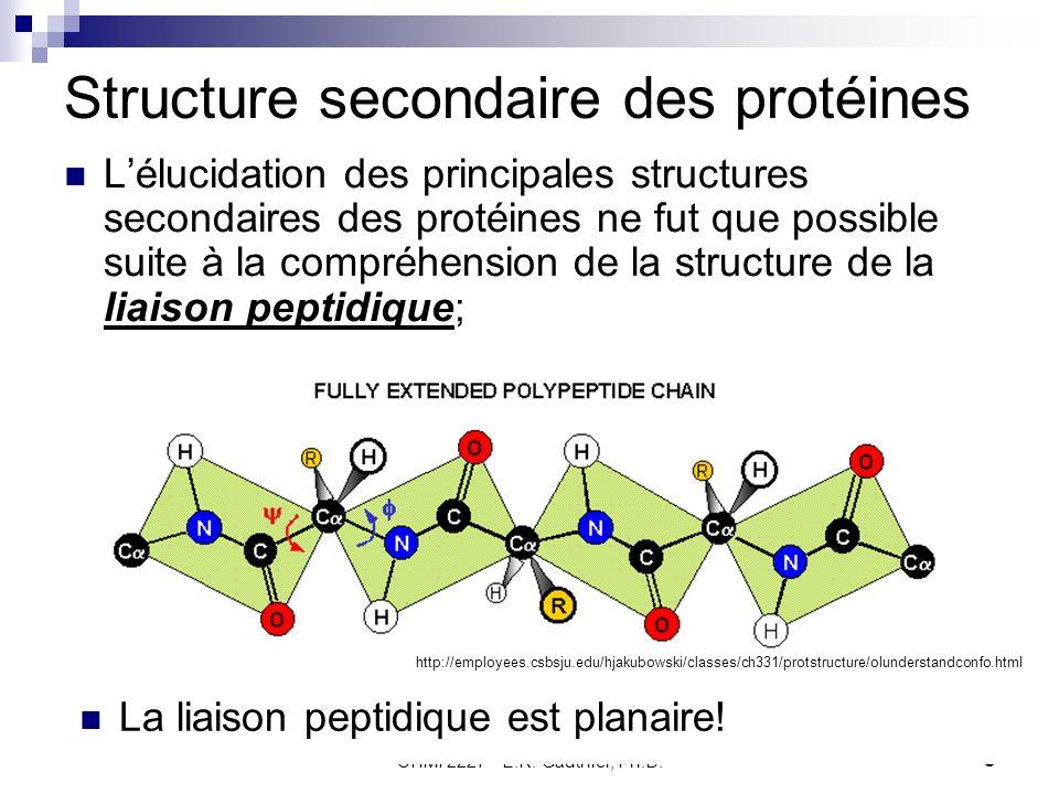 CHMI 2227 - E.R. Gauthier, Ph.D.9 Structure secondaire des protéines Lélucidation des principales structures secondaires des protéines ne fut que poss