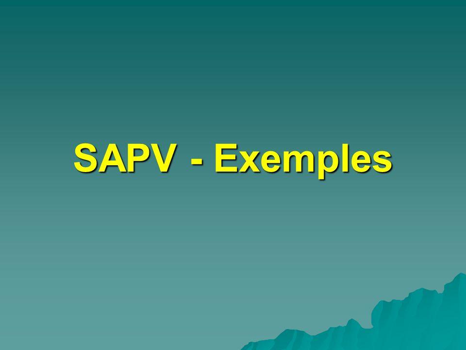 SAPV - Exemples