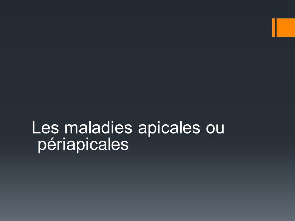 Maladies apicales ou périapicales Dans linflammation pulpaire, létape ultime est la nécrose complète de la pulpe.