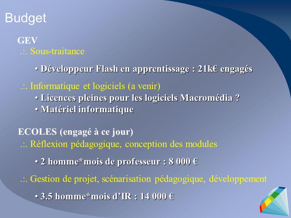 Budget.:. Sous-traitance Développeur Flash en apprentissage : 21k engagés Développeur Flash en apprentissage : 21k engagés.:. Informatique et logiciel
