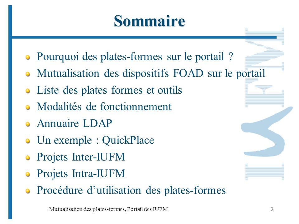 Mutualisation des plates-formes, Portail des IUFM 2 Sommaire Pourquoi des plates-formes sur le portail .