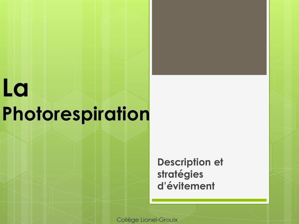 La photorespiration 1.Rappels 2.La RuDP carboxylase et la fixation de lO 2 3.La photorespiration 4.La photorespiration et les climats secs 5.Stratégies dévitement de la photorespiration a.La photosynthèse C4 b.La photosynthèse CAM c.Comparaison C4/CAM Plan du cours Collège Lionel-Groulx