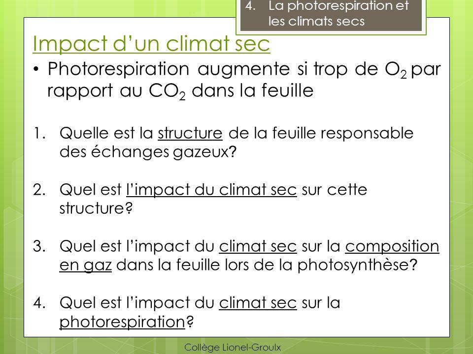 Impact dun climat sec 4.La photorespiration et les climats secs Photorespiration augmente si trop de O 2 par rapport au CO 2 dans la feuille 1.Quelle