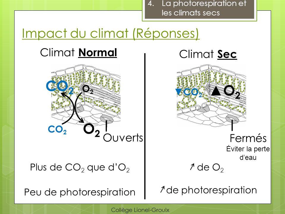 Impact du climat (Réponses) 4.La photorespiration et les climats secs Climat Normal Climat Sec CO 2 O2O2 Ouverts Fermés Éviter la perte deau O2O2 CO 2
