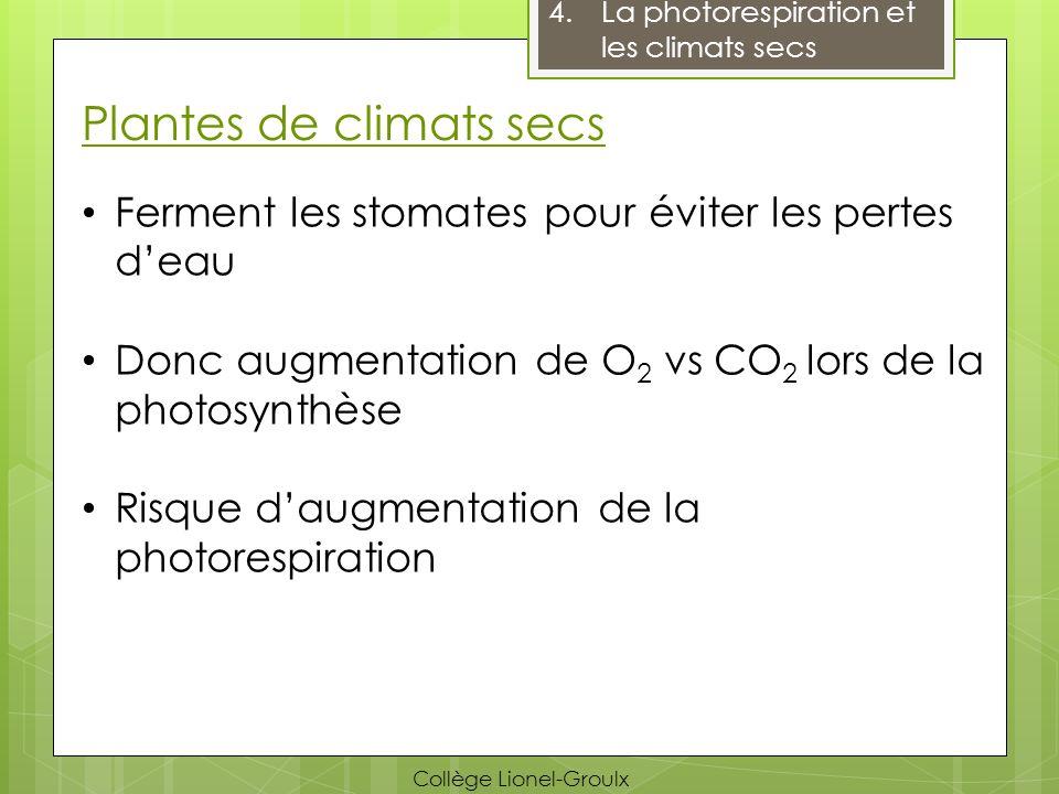 Plantes de climats secs Ferment les stomates pour éviter les pertes deau Donc augmentation de O 2 vs CO 2 lors de la photosynthèse Risque daugmentatio