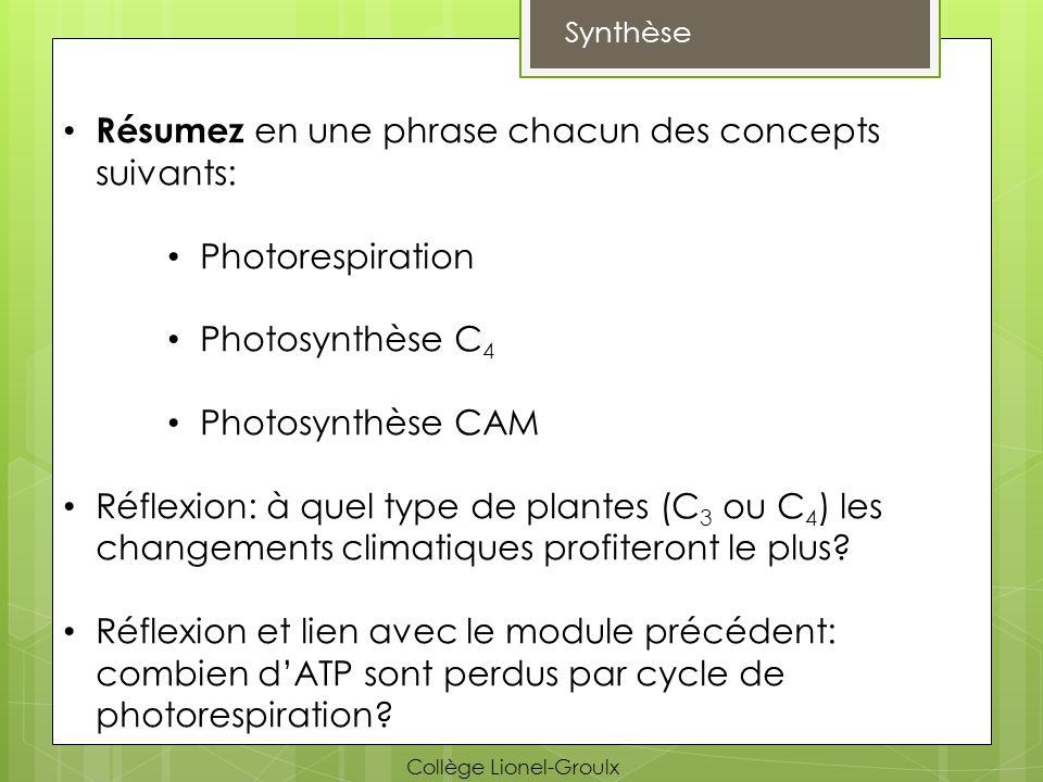 Synthèse Résumez en une phrase chacun des concepts suivants: Photorespiration Photosynthèse C 4 Photosynthèse CAM Réflexion: à quel type de plantes (C